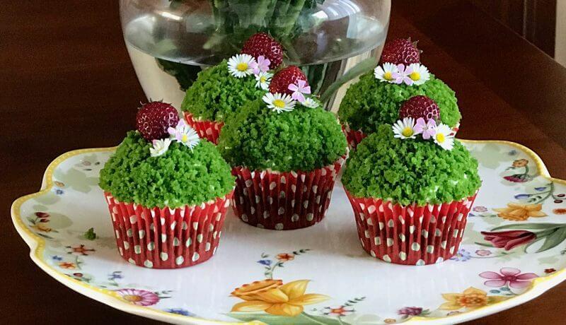 mechove cupcake kosicky