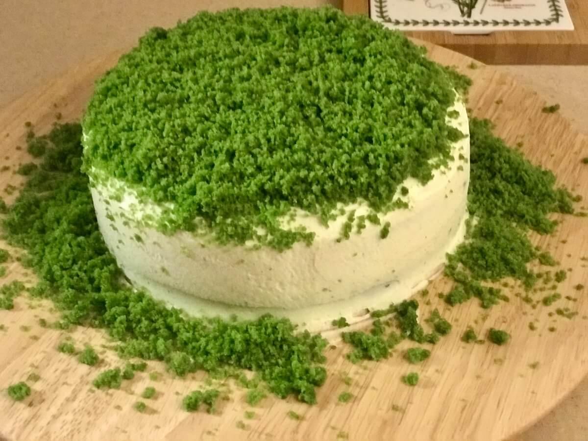 Mechový dort dokončení4
