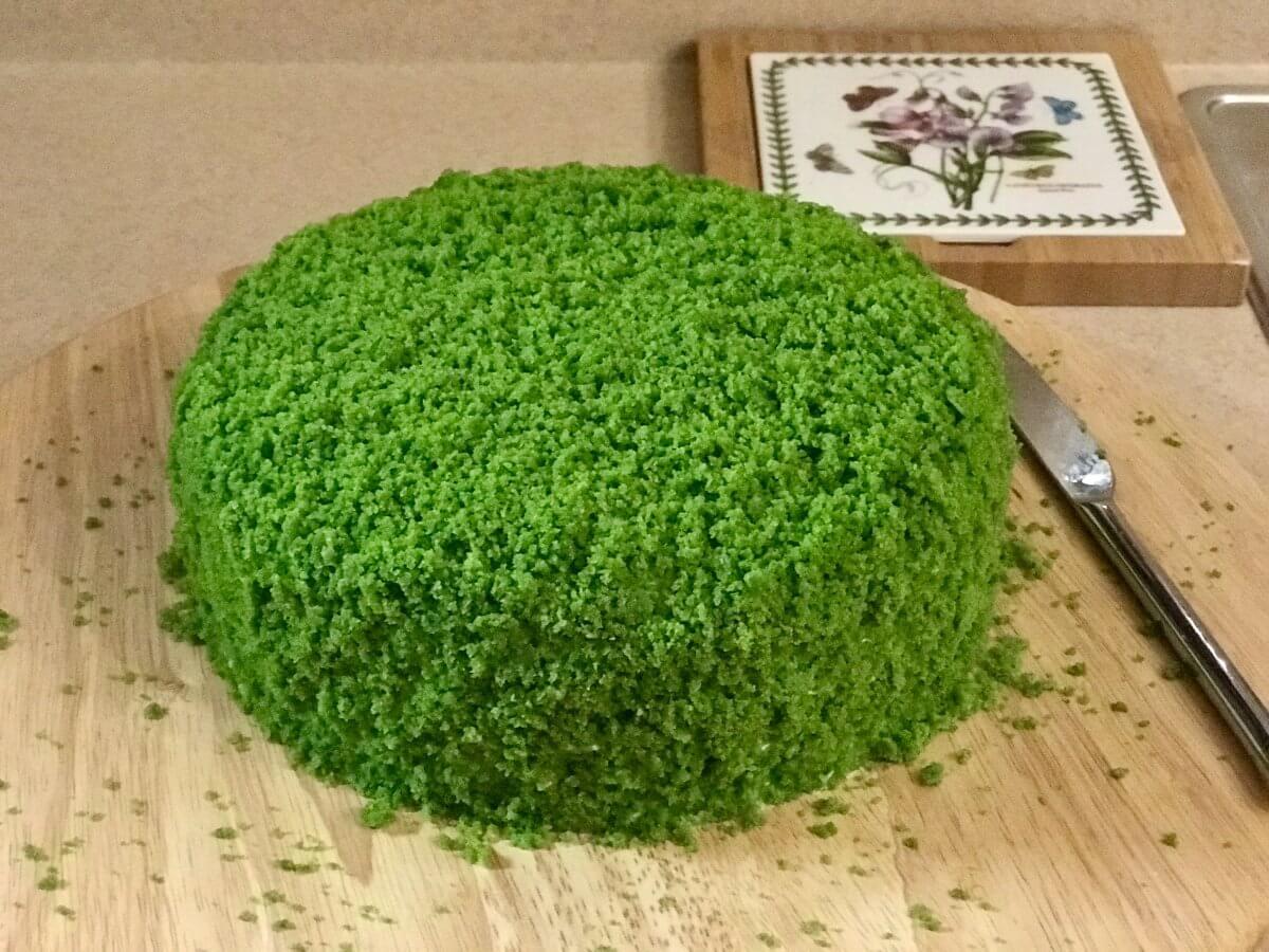 Mechový dort dokončení5