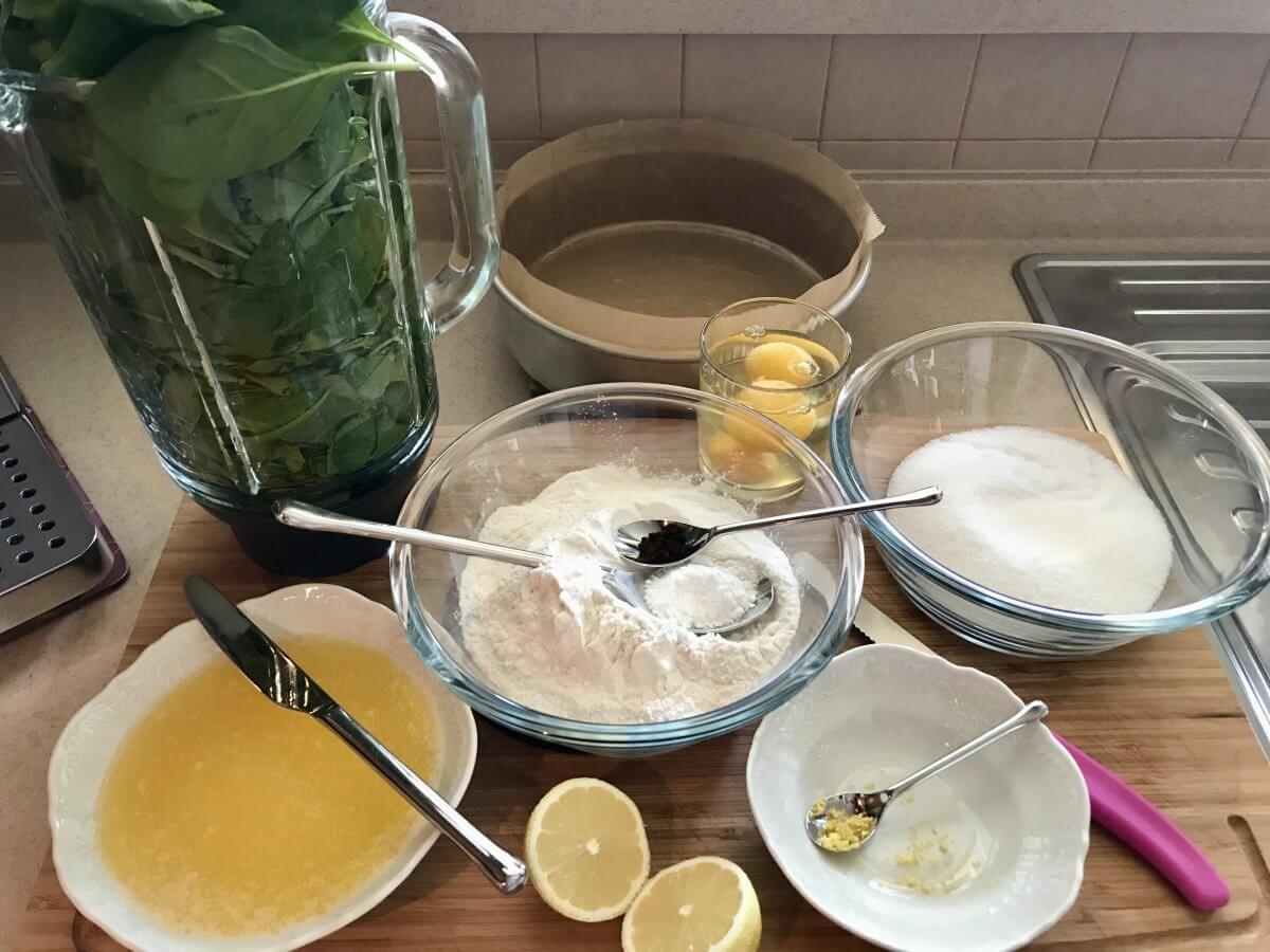 Mechový dort suroviny těsto
